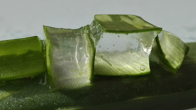 Pieces of Tranparent Aloe Vera Gel image along with it leaves