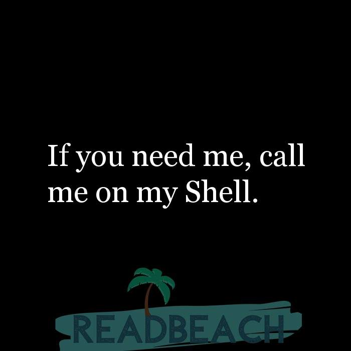 4 Shell Quotes with Pictures 📸🖼️ - If you need me, call me on my Shell.
