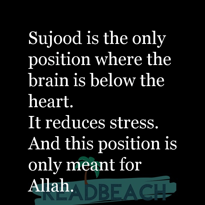 2 Sujood Quotes with Pictures 📸🖼️ - Sujood is the only position where the brain is below the heart. It reduces stres