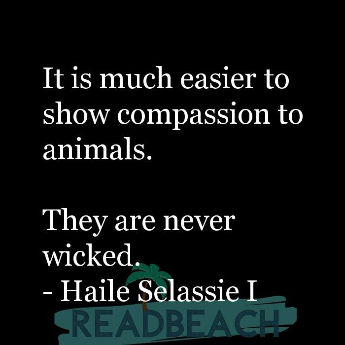 8 Animals Quotes with Pictures 📸🖼️ - It is much easier to show compassion to animals. They are never wicked.