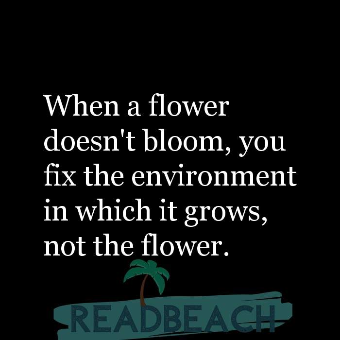 5 Emotions Quotes with Pictures 📸🖼️ - When a flower doesn't bloom, you fix the environment in which it grows, not the