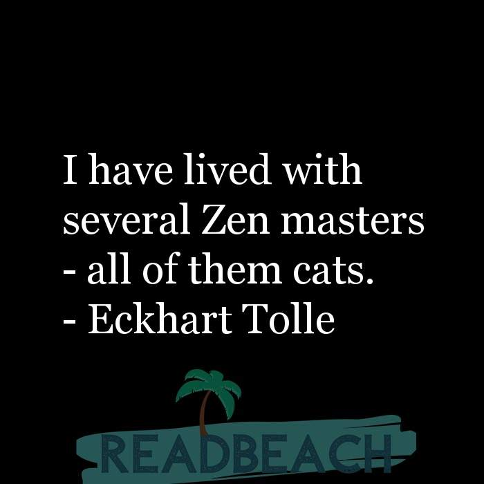 Minion Quotes - I have lived with several Zen masters - all of them cats.
