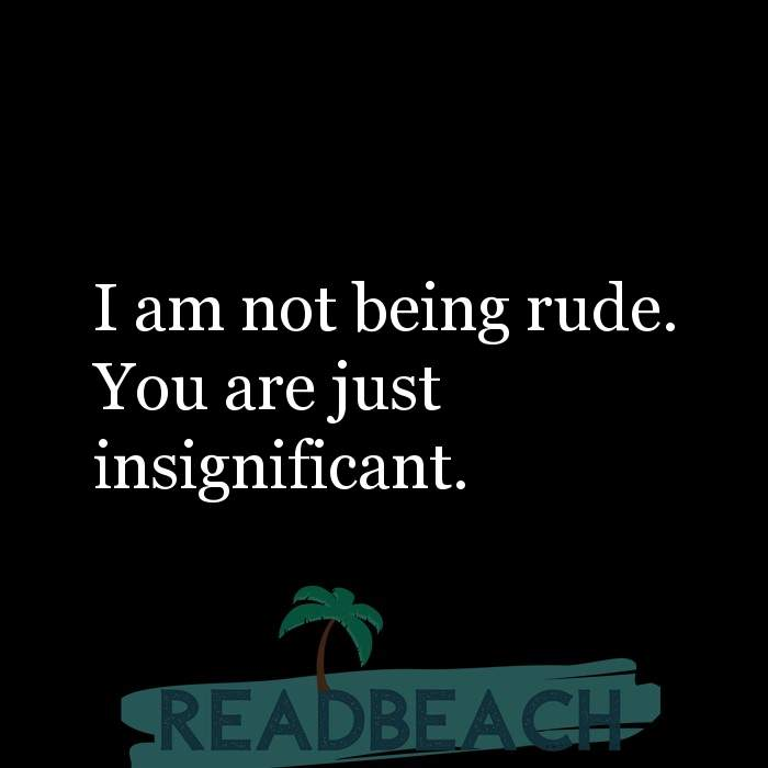 Savage Comebacks to insults - I am not being rude. You are just insignificant.