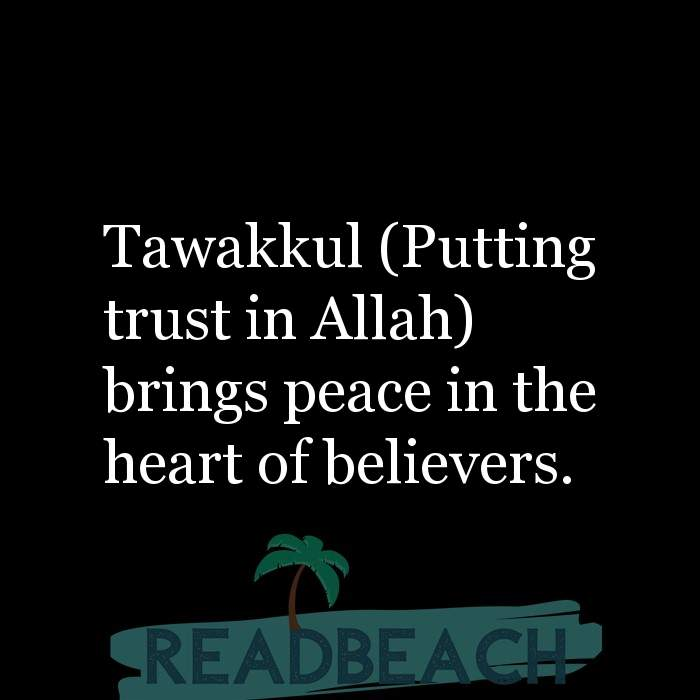11 Peace Quotes with Pictures 📸🖼️ - Tawakkul (Putting trust in Allah) brings peace in the heart of believers.