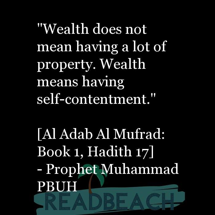 """17 Wealth Quotes with Pictures 📸🖼️ - """"Wealth does not mean having a lot of property. Wealth means having self-content"""